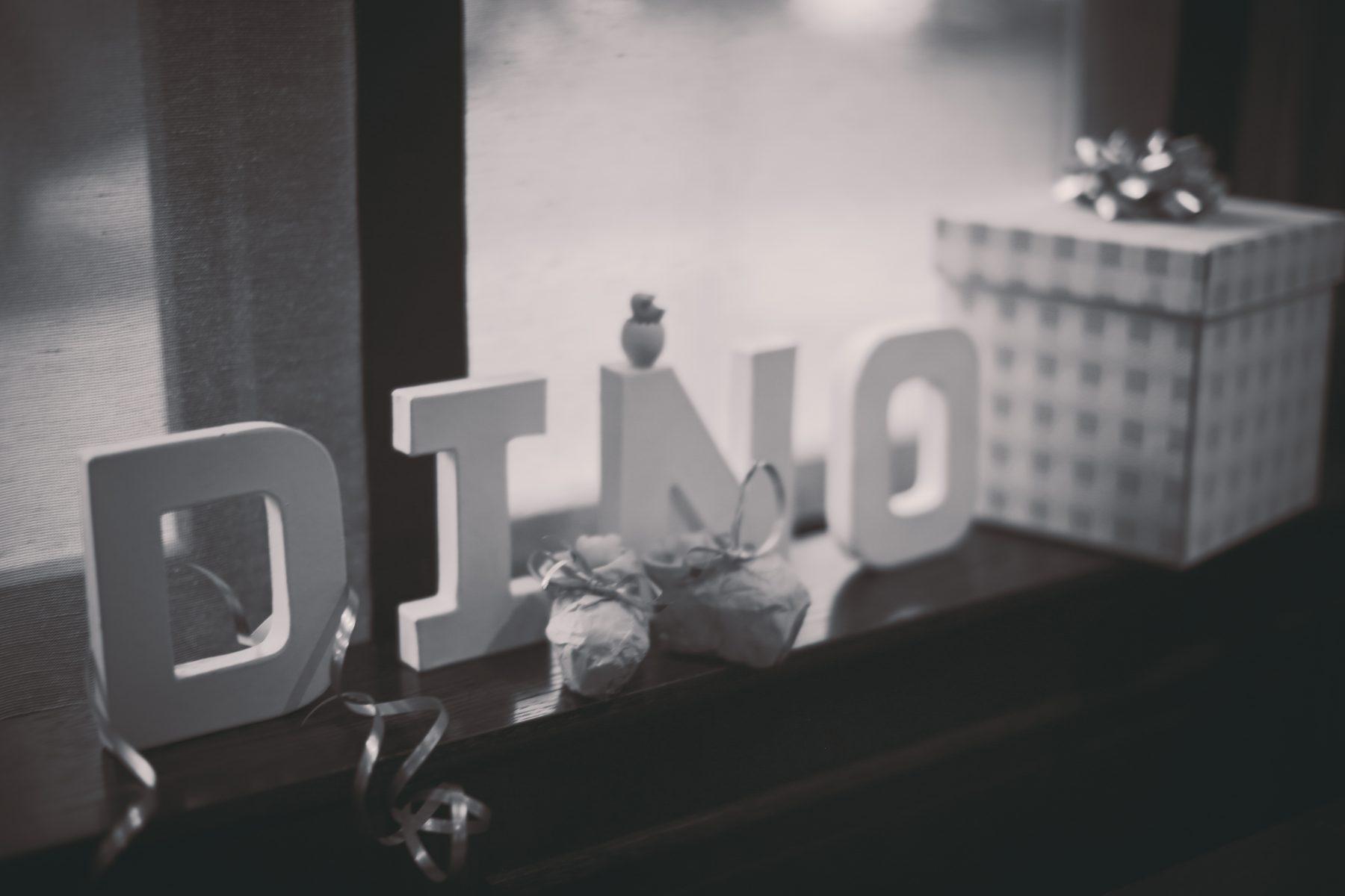 Baby Shower - DINO-38